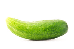 Fresh cucumber. On white background Royalty Free Stock Images