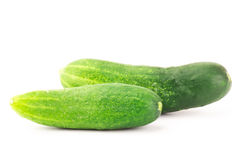 Fresh cucumber. On white background Stock Image