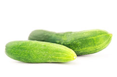 Fresh cucumber Stock Image