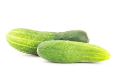 Fresh cucumber Stock Photography
