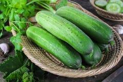 Fresh cucumber on white background Royalty Free Stock Photography