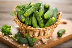 Free Fresh Cucumbers Royalty Free Stock Photo - 102701305