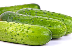 Fresh cucumbers. Some fresh cucumbers on white background in studio Stock Image