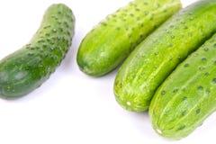 Fresh cucumbers Stock Photo