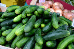 Fresh cucumbers. And oions at weekend framers market Stock Photos