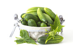 Fresh cucumbers in a basket Stock Photography