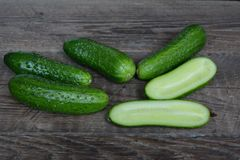 Fresh cucumbers from a bed Royalty Free Stock Images