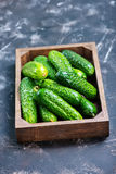 Fresh cucumbers. In box and on a table Royalty Free Stock Images
