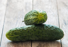 Fresh cucumbers Stock Images