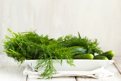 Fresh cucumbers and dill Royalty Free Stock Photos