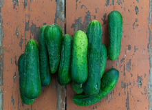 Fresh cucumbers dry surface vintage table Royalty Free Stock Photo