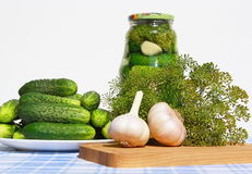Fresh cucumbers, garlic and dill on a table. Royalty Free Stock Photo
