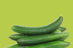 Fresh cucumbers Stock Photos