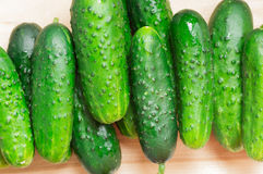 Fresh cucumbers, green a heap of Royalty Free Stock Photography