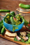 Fresh cucumbers and ingedients for homemade gherkin Stock Photography