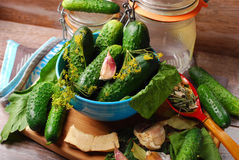 Fresh cucumbers and ingedients for homemade gherkin Stock Image