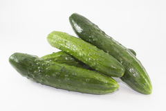Fresh cucumbers isolated on white Royalty Free Stock Image