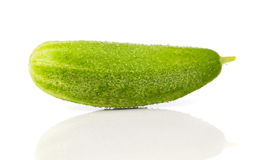 Fresh cucumbers Stock Photography
