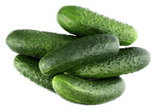 Fresh cucumbers isolated on white. Tasty, natural Royalty Free Stock Images