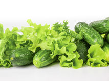 Fresh cucumbers with lettuce Royalty Free Stock Photo