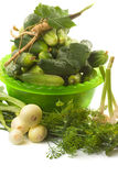 Fresh cucumbers and other vegetables Royalty Free Stock Photo