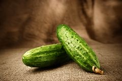 Fresh cucumbers on the sacking background Royalty Free Stock Photo