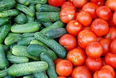 Fresh cucumbers for sale Stock Image