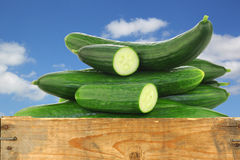 Fresh cucumbers and some cut pieces. In a wooden crate against a blue sky with clouds Stock Photography