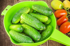 Fresh cucumbers and tomatoes from the home garden Stock Photos
