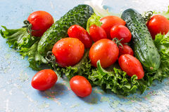 Fresh cucumbers, tomatoes, lettuce Stock Photography