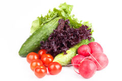 Fresh cucumbers, tomatoes, radishes, salad from the garden on a Royalty Free Stock Photos