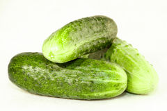 Fresh cucumbers on a white background Royalty Free Stock Photo