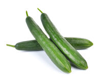 Fresh cucumbers  on white background Stock Image
