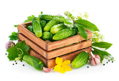 Fresh cucumbers in wooden box with green leaf and flower Stock Photos