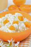 Fresh curd cheese with apricot slices Royalty Free Stock Image
