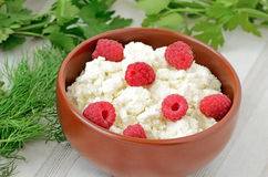 Fresh curd cheese in bowl Royalty Free Stock Photos