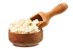 Fresh curd cheese in the bowl stock image