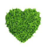 Fresh curly grass 3d heart. Ecology concept heart illustration, isolated on white background royalty free illustration