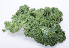 Fresh curly kale Stock Images