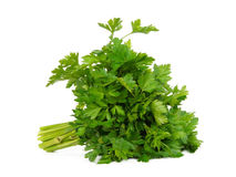 Fresh curly parsley. Isolated over white background Stock Photo