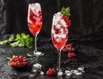 Fresh currant cocktail. Fresh summer cocktail with red currant and ice cubes. Glass of red currant mojito Royalty Free Stock Photos