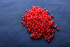 Fresh currant different shades of bright red color. Tasty, healthy, raw, juicy, nutritious and ripe concept. Royalty Free Stock Images