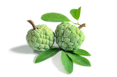Fresh custard apple isolate on white background Royalty Free Stock Images