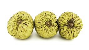 Fresh Custard Apple or Ripe Sugar Apple Fruit  Annona, sweetsop Isolated on white background on with clipping path / well-branch Royalty Free Stock Image