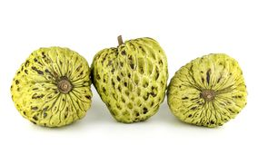 Fresh Custard Apple or Ripe Sugar Apple Fruit  Annona, sweetsop Isolated on white background on with clipping path / well-branch Royalty Free Stock Images
