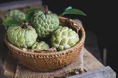Fresh Custard Apples Royalty Free Stock Photos