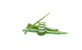 Fresh cut aloe vera leaf isolated Royalty Free Stock Images