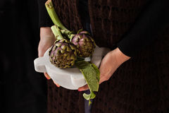 Fresh Cut Artichokes Royalty Free Stock Images