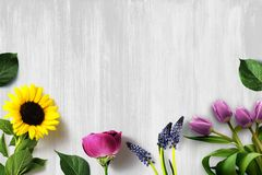 Fresh Cut Country Spring Floral Arrangement Background. Fresh cut country spring floral arrangement with sunflower, rose, lupines and tulips on chic wood Stock Image