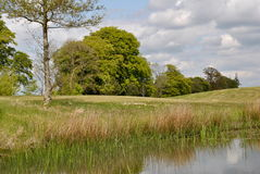 Fresh cut fairway on a parkland course royalty free stock photo